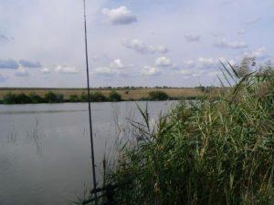 Пасмурно на рыбалке