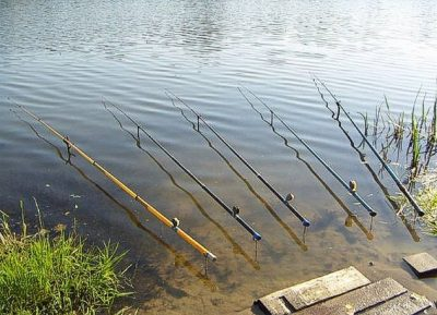 Удочки на озере
