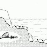Метод проводки
