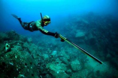 Техника подводной охоты описание особенности советы опытных охотников
