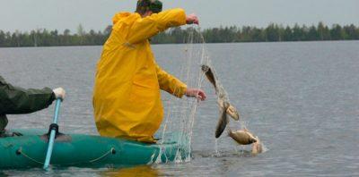 Рыбак с сетью