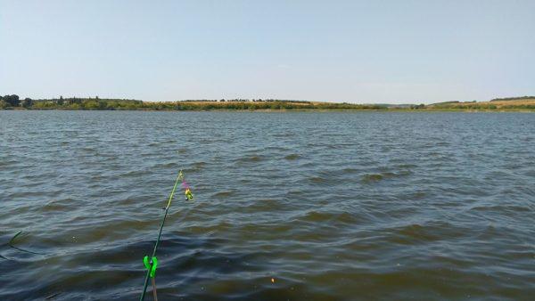 Закидушка на озере