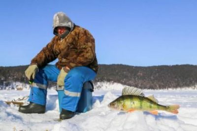 Зимний рыболов