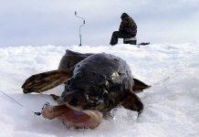 Рыбак зимой на водоеме