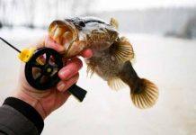 Рыба и удочка в руке