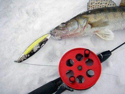 Рыба с удочкой на льду