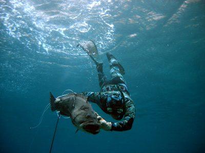 Подводная рыбалка на сома