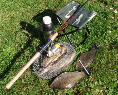 Снасти и рыба на траве