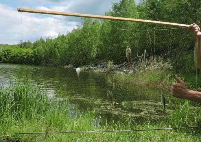 Экран для рыбалки