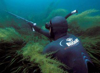 Подводный охотник в водорослях