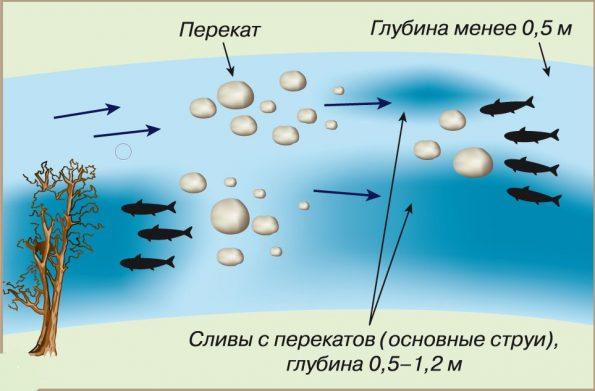 Места стоянки рыбы