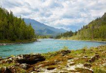 Река Алтая
