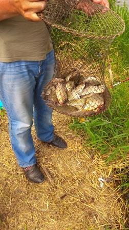 Садок с рыбой в руках