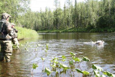 Ловля рыбы в реке