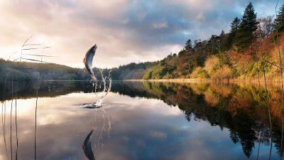 Рыбалка осенью на Волге
