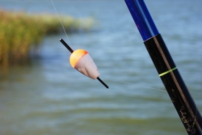 Удилища для поплавочной ловли: виды, строй и тест