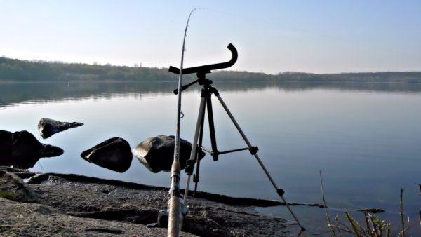Фидер на озере