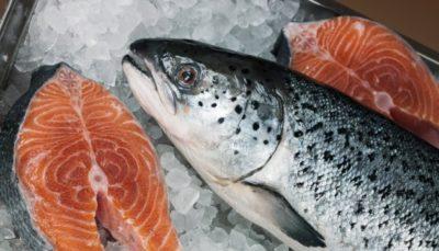 Стейк из рыбы