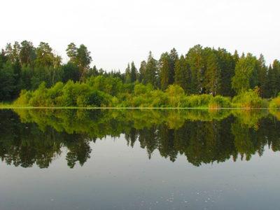 Озеро рядом с лесом