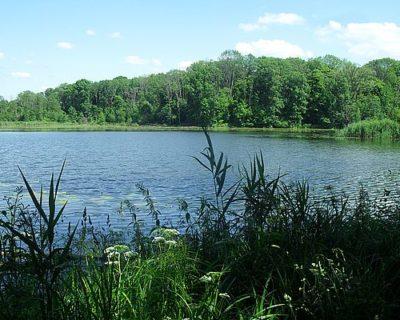Озеро Званое